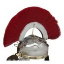 Crête rouge - (Centurion) transversal +56,80€