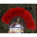 Crête en bois rouge - (Optio) longitudinales +58,80€