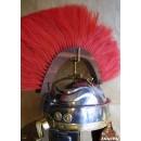 Crête en bois rouge - (Centurion) transversal +58,80€