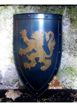 Bouclier Médiévale Avec Lion Rampant
